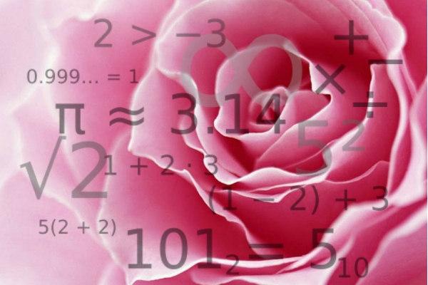 foto di una rosa con numeri a rappresentare le abilità matematiche