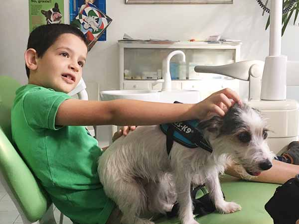Benefici della pet therapy dal dentista